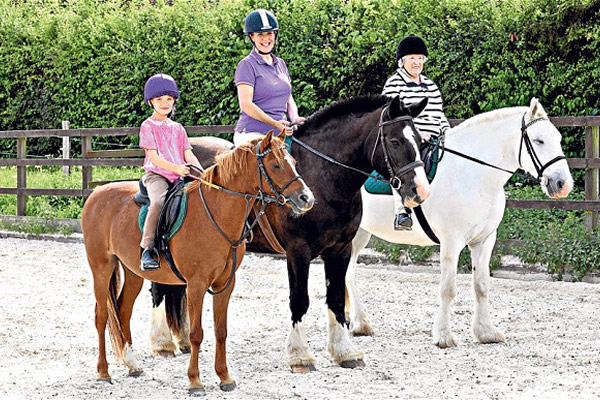 Horse Riding Classes (Meath)