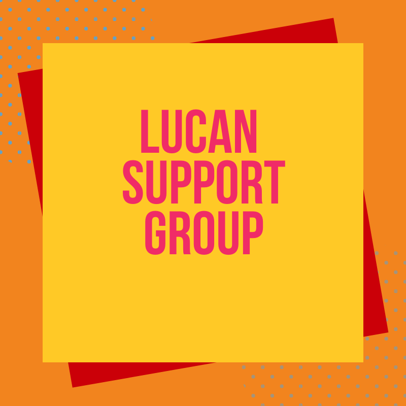 Lucan meeting and talk